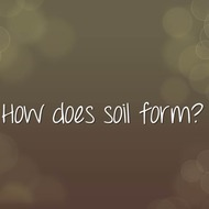 Concept 6: How does soil form?