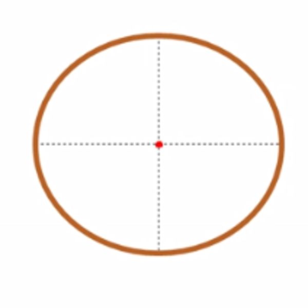 Placement of the Center of Mass