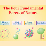 Types of Forces Tutorial   Sophia Learning