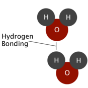 Molecular Structure of Water