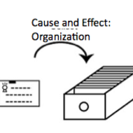 Cause and Effect Papers: Organization