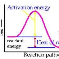23.4 Reaction Rates and Energy