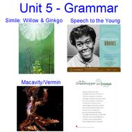 Unit 5 Grammar Thinglink