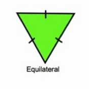 Categorizing Triangles with Congruency