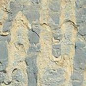 Proterozoic Age