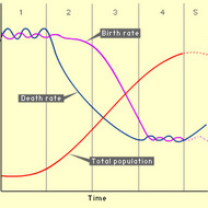 Demographic Transition Model (DTM)
