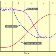 Demographic Transition Model (DTM)