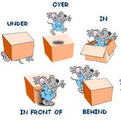Prepositions and the Prepositional Phrase