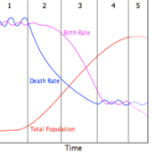 Demographic Transition Scattegories