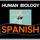 Cancer and Homeostasis/Cancer y la Homeostasis