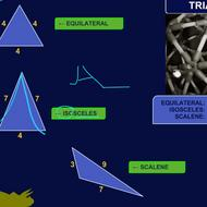 Scalene, Isosceles, and Equilateral Triangles
