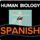 Endoplasmic Reticulum/Reticulo Endoplasmatico