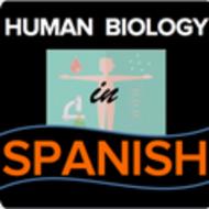 Nervous System and Contractions/El sistema nervioso y las contracciones musculares - Espanol
