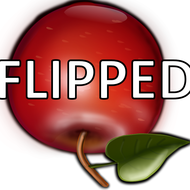 Learning Strategies in a flipped classroom format