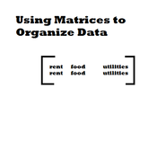 Using Matrices to Organize Data