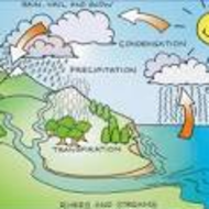 Facts about the water cycle