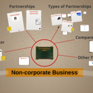 Non-corporate Business