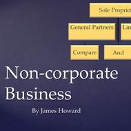 Non-corporate Business