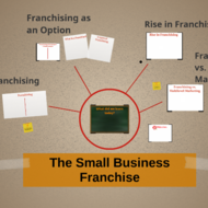 The Small Business Franchise