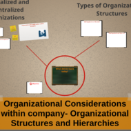 Organizational Considerations: Structures and Hierarchies