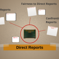 Direct Reports