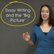 """Essay Writing and the """"Big Picture"""""""
