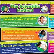 Scientific Method Online Quiz