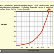 exponential functions in the real world tutorials quizzes and help