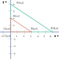 Transformations/Dilations of Geometric Figures
