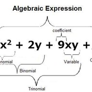 Lesson 1.2 Variables, Expressions and Equations