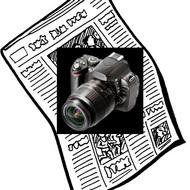 News Bias Explored