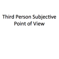 Third Person Subjective Point of View