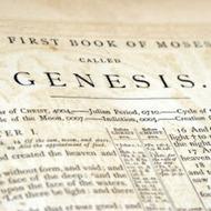 Genesis for Geniuses