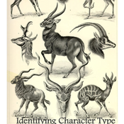 Identifying Character Types