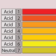 Unit 12 Lesson 2: Acids, Bases and pH