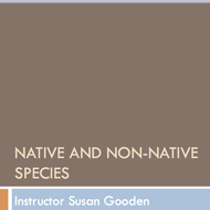 Native and non-native species