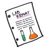 Lab Report Documents
