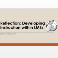 Reflection: Developing Instruction within LMSs