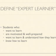 Expert Learners