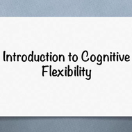 Introduction to Cognitive Flexibility Theory