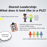 Shared/Distributed Leadership