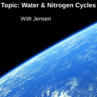 Water and Nitrogen Cycles