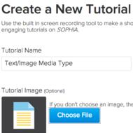 Text/Image Media Type