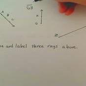 Naming Rays