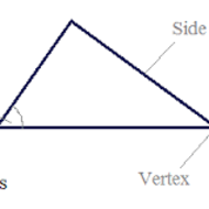 Attributes of Triangles, 8-15, 5th