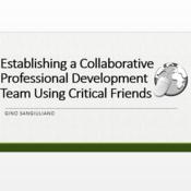 Establishing a Collaborative Professional Development Team Using Critical Friends