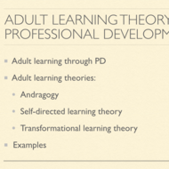 Adult Learning Theory and Professional Development