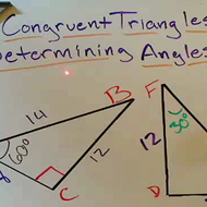 Determining the Angles of Congruent Triangles