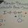 Calculating Angles of a Regular Polygon