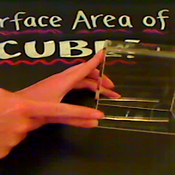 Surface Area of a Cube